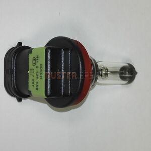 Лампа противотуманной фары H11 12V 55W  #1